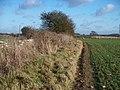 Field edge path - geograph.org.uk - 1630273.jpg