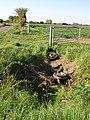 Field gate - geograph.org.uk - 419472.jpg