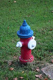 Fire-hydrant-demorest