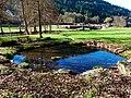 Fish Pond - panoramio - Dg-505.jpg