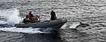 Flickr - Official U.S. Navy Imagery - A porpoise swimgs along a Navy small boat..jpg