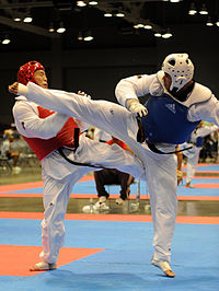 Flickr - The U.S. Army - Taekwondo champion.jpg