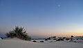 Flickr - ggallice - White Sands.jpg