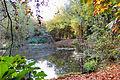 Flickr - ronsaunders47 - AUTUMNAL SHADES. BIRCHWOOD. WARRINGTON UK..jpg