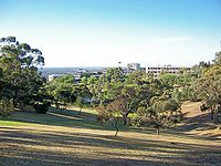 Flinders from hill.jpg