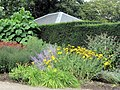 Flowerbed near the Entrance Gate, Pembroke Lodge, Richmond Park - geograph.org.uk - 1426802.jpg