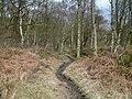 Footpath. - geograph.org.uk - 140443.jpg