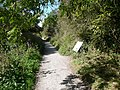 Footpath - Entering Lathkill Dale National Nature Reserve - geograph.org.uk - 562343.jpg