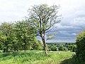 Footpath To Barn Farm - geograph.org.uk - 437671.jpg