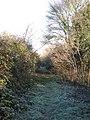 Footpath to Moor Farm - geograph.org.uk - 1651987.jpg