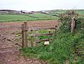 Footpath to Pengold Farm - geograph.org.uk - 437337.jpg