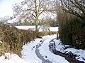 Footpath to White Sheet Hill - geograph.org.uk - 1154064.jpg