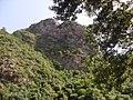 Forêt de Bejaia.jpg