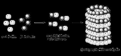 Acetylation - Wikipedia