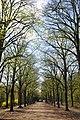 Gödöllő, Erzsébet park, 2.jpg