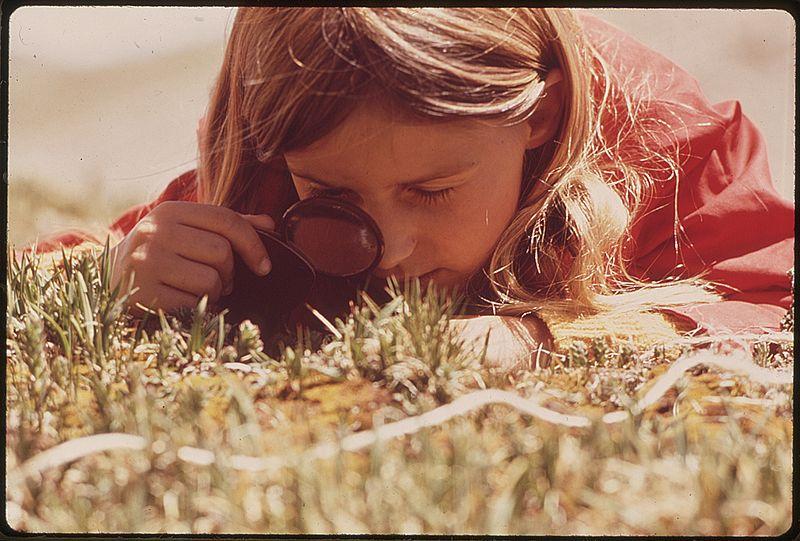Дівчинка розглядає рослини в лупу в тундрі Скелястих гір (фото Environmental Protection Agency, суспільне надбання)