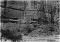 Galleries formed by seepage of water and scaling off of sandstone. West wall of Canyon above Temple of Sinawava. - NARA - 520459.tif