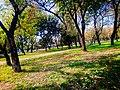 Garden near the faisal masjid in Islamabad.jpg