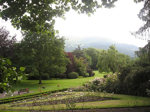 Gardens and Mist - geograph.org.uk - 1773930