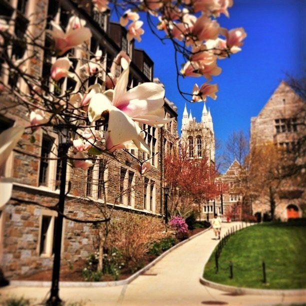 Gasson Hall in Summer