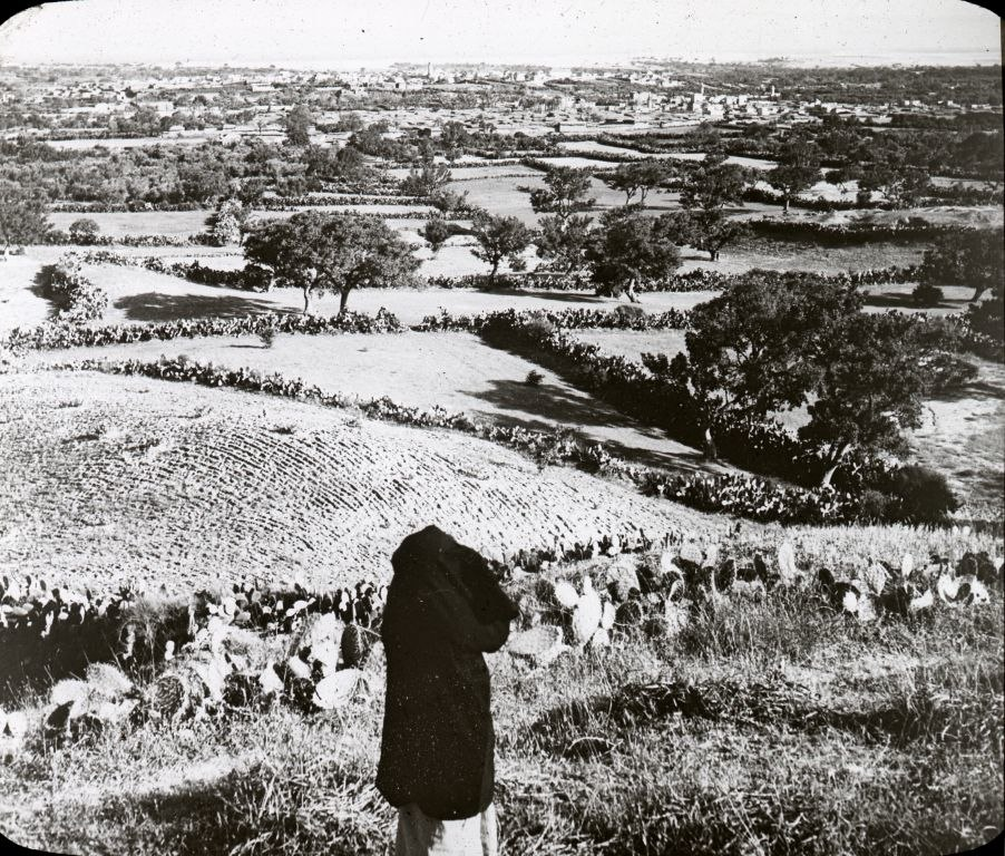 Gaza from the Hills Muntar