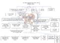 Genealogia Banchieri Poggi3.png