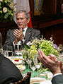 George Bush on Saint Patrick's Day 2008.jpg