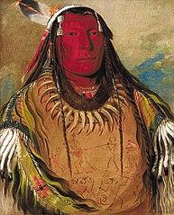 Pa-ris-ka-roó-pa, Two Crows, a Chief