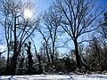 Georgia snow IMG 4927 (38947560951).jpg