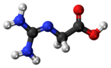 Ball and stick model of a glycocyamine minor tautomer