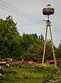 Gmina Ryn, Poland - panoramio (27).jpg