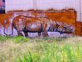 Grafiti triceratops 1-10-14.JPG