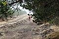 Gralhas, 5470, Portugal - panoramio (12).jpg