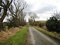 Green Lane - geograph.org.uk - 1709867.jpg