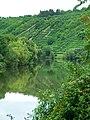 Green Neckar - panoramio.jpg