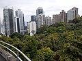 HK ML 半山區 Mid-levels 波老道 Borrett Road February 2020 SS2 05.jpg