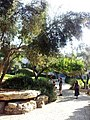HUJI VIEW 20120911 163942.jpg