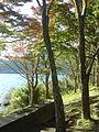 Hakone Ashinoko lake dsc05266.jpg