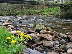 Haltwhistle Burn - geograph.org.uk - 163562.jpg