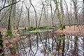 Hambacher Forst 2016 LBA 4703.jpg
