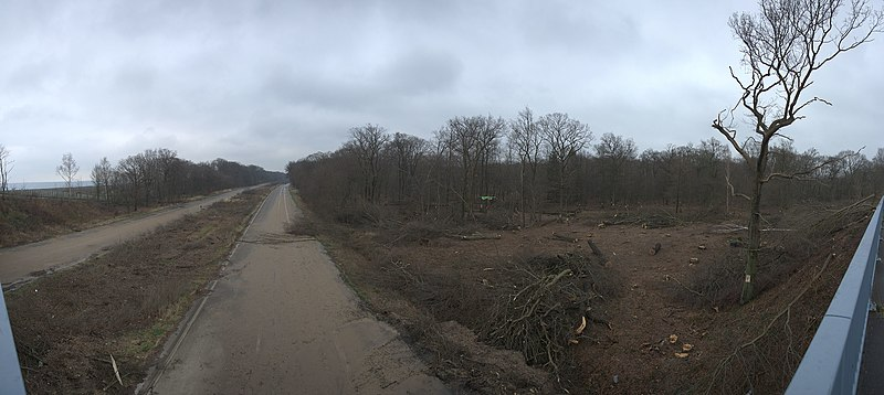 Datei:Hambacher Forst und A4 von Brücke Etzweiler Weg 2016 LBA 4799 Panorama.jpg