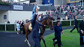 Harbinger at 2010 King George VI and Queen Elizabeth Stakes.jpg