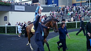 Harbinger (horse) - Image: Harbinger at 2010 King George VI and Queen Elizabeth Stakes