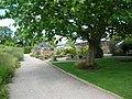 Harlow Carr - Greenhouse - geograph.org.uk - 224467.jpg