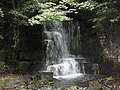 Harmby waterfall - geograph.org.uk - 1435808.jpg