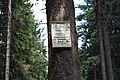 Harzwanderung Oberharz um Braunlage - Wurmberg - Weg nach Braunlage -Wurmberg - panoramio (3).jpg