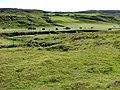 Haymaking at Hamaraverin - geograph.org.uk - 952203.jpg