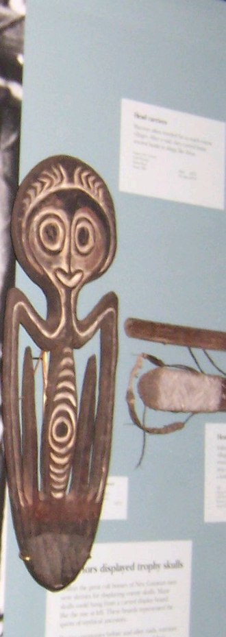 Headhunting - A two-head tray artefact, pictured on the right. On the left is a photograph of an upgraded, seven-head tray, from Papua New Guinea, early 1900s. The display would have been hung on a wall in a communal men's house.