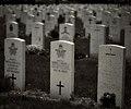 Headstones in Beechwood Cemeteryc.jpg