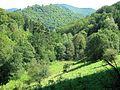Heibeekstal, Blick Richtung Bad Lauterberg - panoramio.jpg